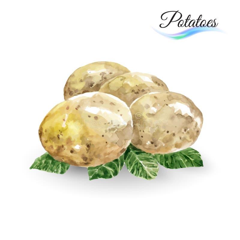patate royalty illustrazione gratis