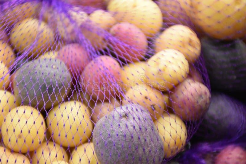 Patate di riserva delle patate dell'arcobaleno fotografie stock libere da diritti