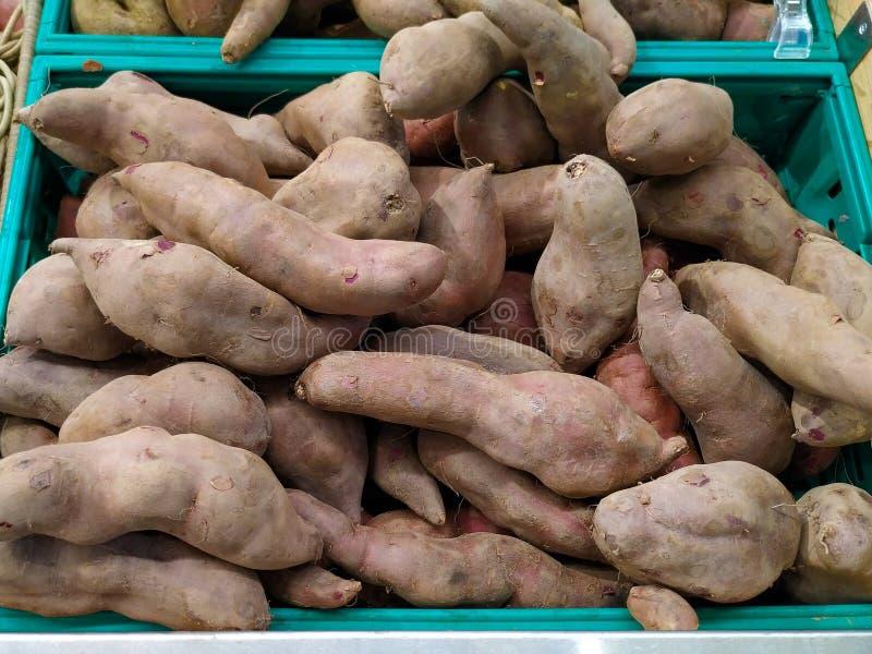 Patate dolci fresche e organiche/ipomoea batatas da vendere nel supermercato immagine stock libera da diritti