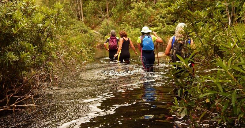 Patauger en bas de la rivière photo stock