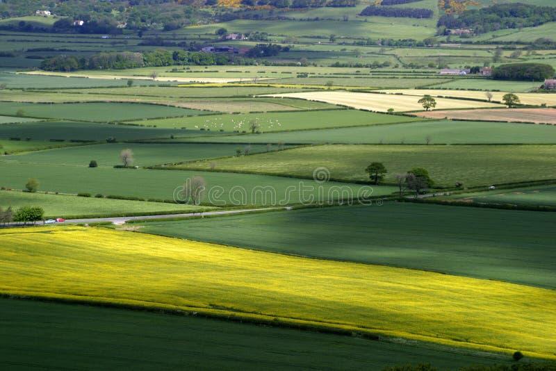 Patchwork Landscape stock photo
