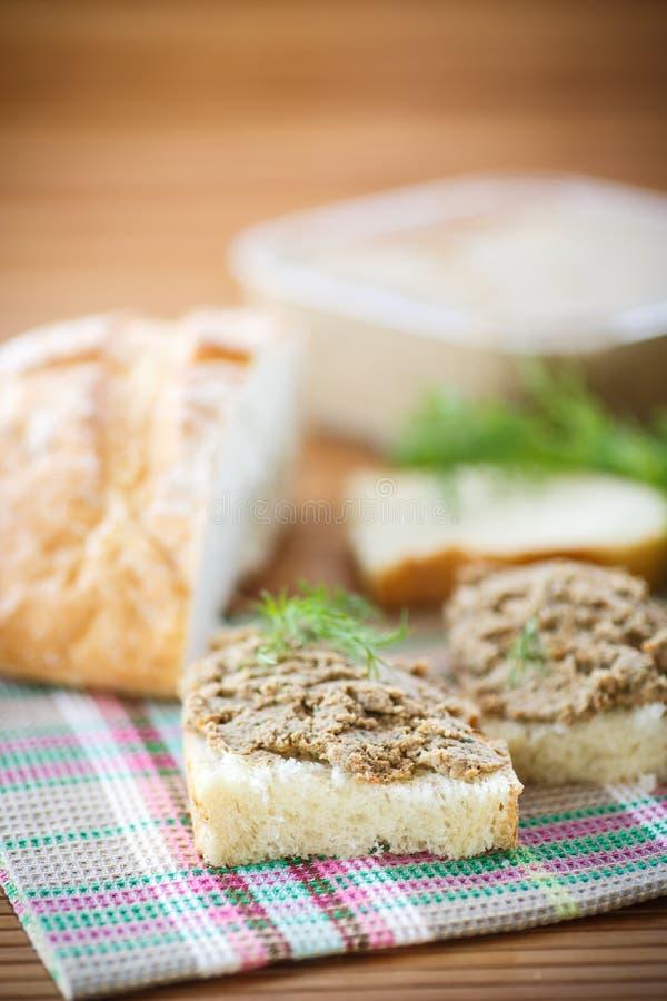 Pate med bröd royaltyfria foton