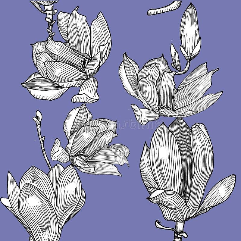Patern con los magnolies Gráficos exhaustos de la mano stock de ilustración