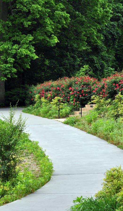 Free Path Stock Image - 14873521