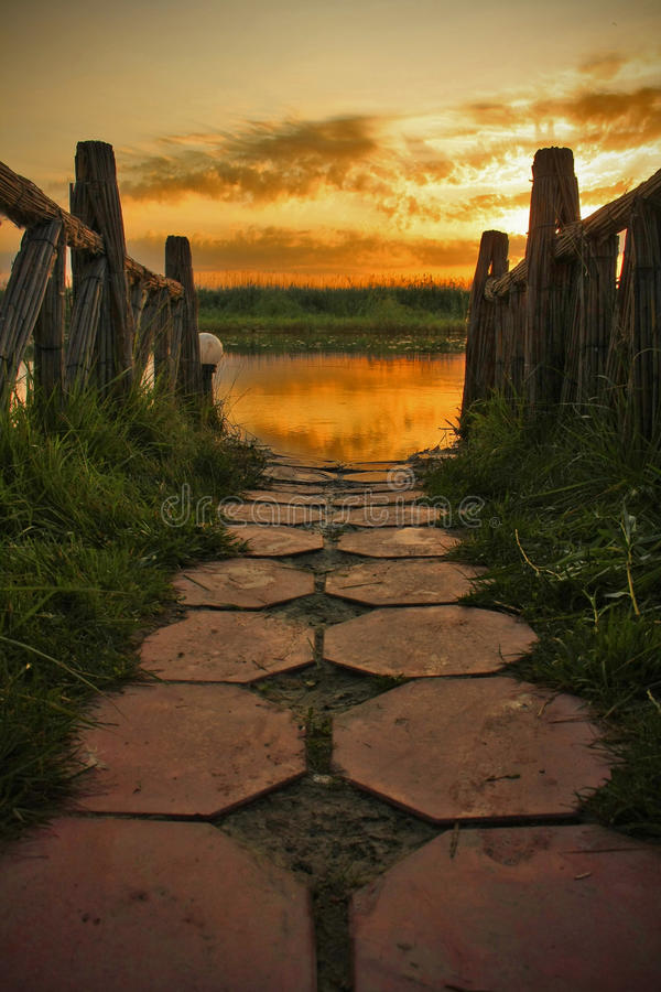 Path. Walking path at sunrise with water reflection in Danube Delta, Romania stock photo
