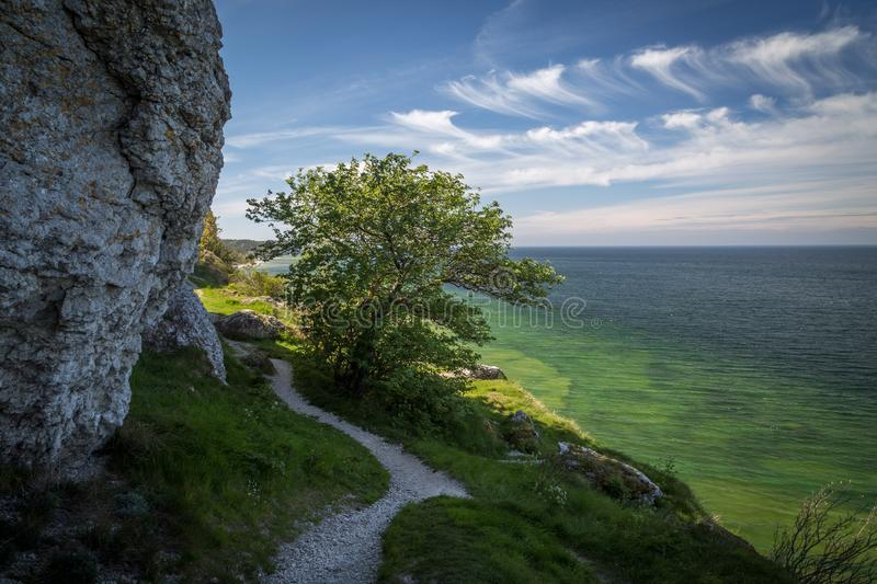 Path along the limestone cliffs along the west coast of Gotland, Sweden. Path along the limestone cliffs above the crystal clear water of the baltic sea on the stock photos