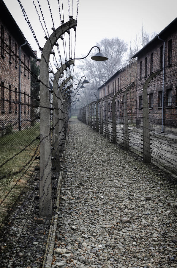 Path in Auschwitz royalty free stock photo