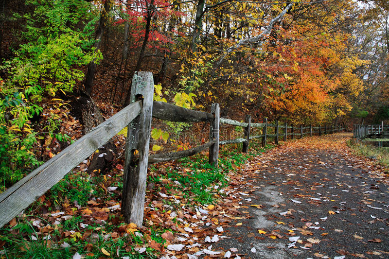 Download Path In Autumn stock image. Image of scene, outdoors - 34223875
