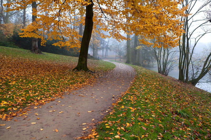 Download Path in autumn park stock photo. Image of silent, nature - 28510492