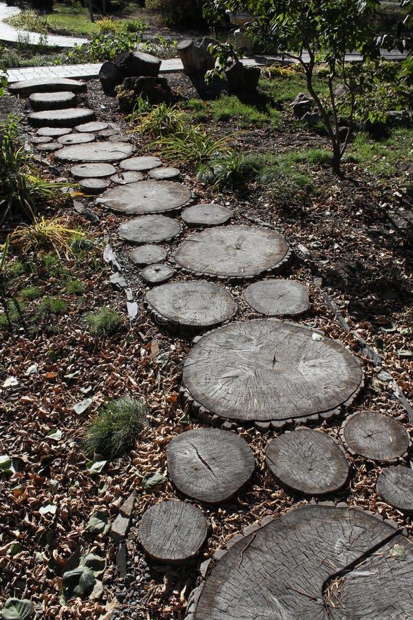 Path In Autumn Park. Stock Photo