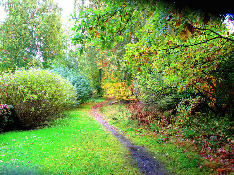 Path in a Beautiful Autumn Park stock photos
