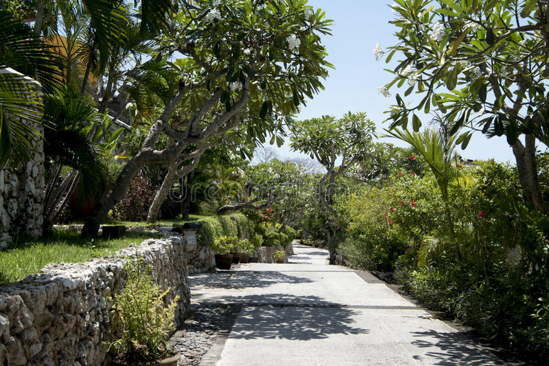 Path in beautiful garden, Bali royalty free stock images