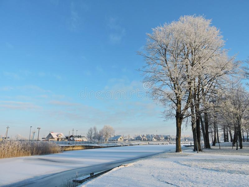 Silute town in winter, Lithuania. Path, beautiful white trees and homes in Silute, Lithuania royalty free stock images