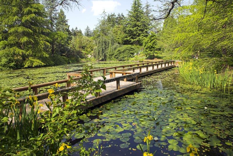 Path in botanical garden stock photo