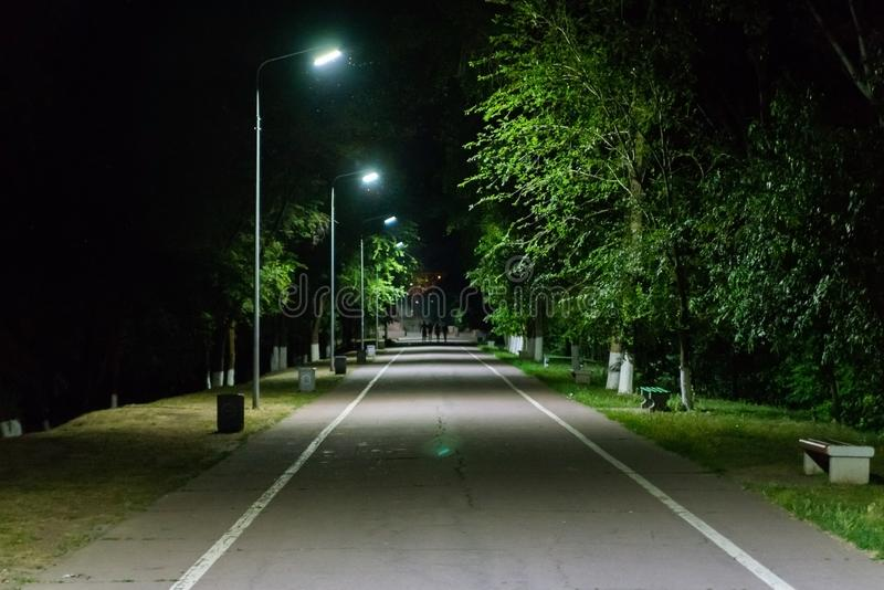 Path through city park at night with street lamps. Dark, light, outdoor, evening, nature, illuminated, road, spring, urban, spooky, blue, branch, outside royalty free stock photos