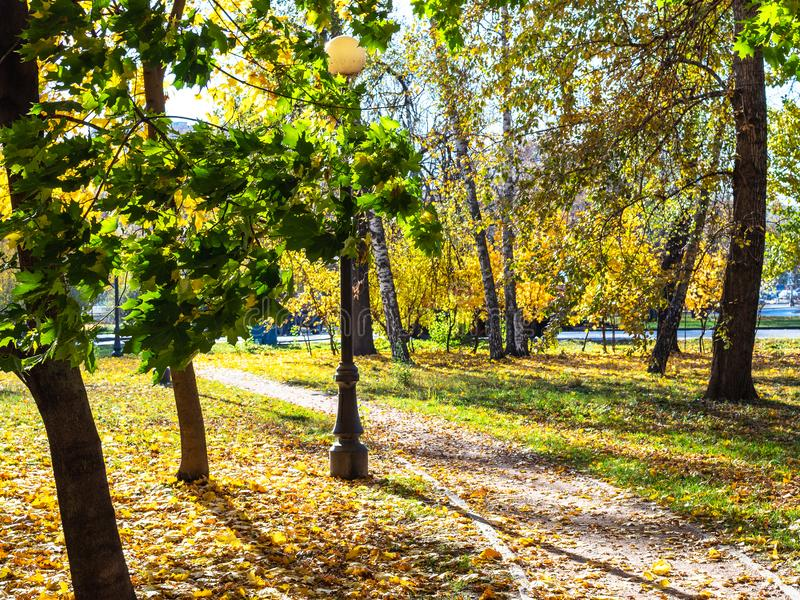 Path covered by fallen leaves in Petrovsky park. Of Moscow city in sunny autumn day stock photos