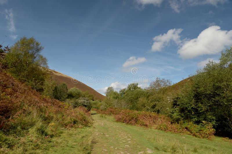 Path in Doone Valley, Exmoor, North Devon. Footpath beside Badgworthy Water near Malmsmead in the Doone Valley, Exmoor, North Devon stock photo
