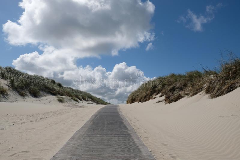 A path between the dunes royalty free stock photography