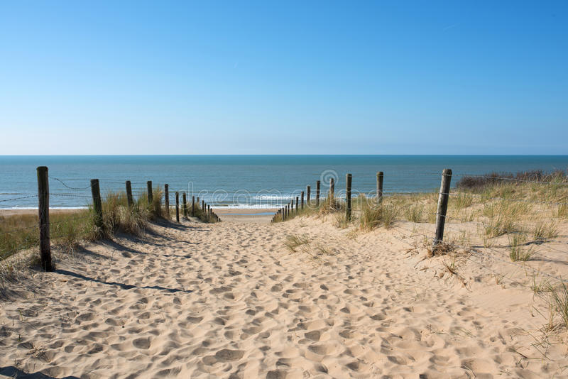 Path in the dunes with sea view stock photo