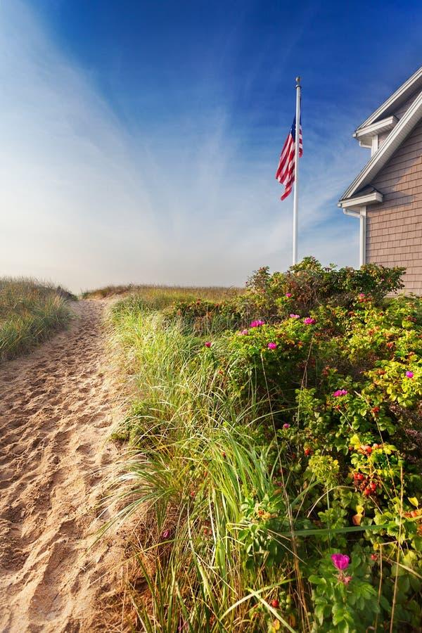 Path through dunes to beach royalty free stock photo