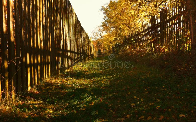 Between fences. The path between fences in autumn season at sunset stock photography