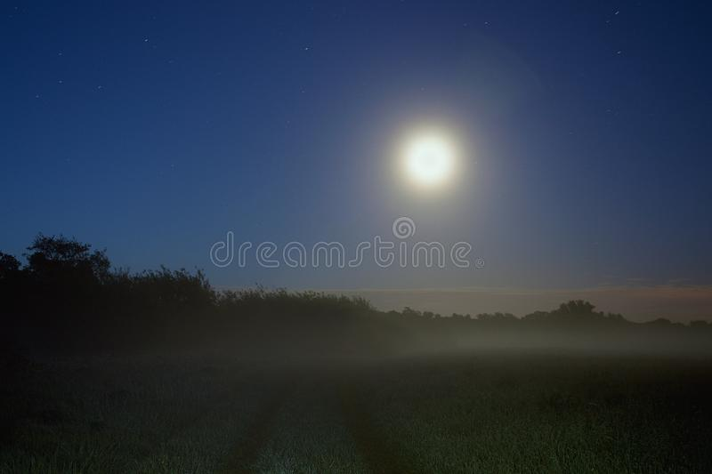A path through a field on a misty, spooky night. With the moon in the night sky.  stock images