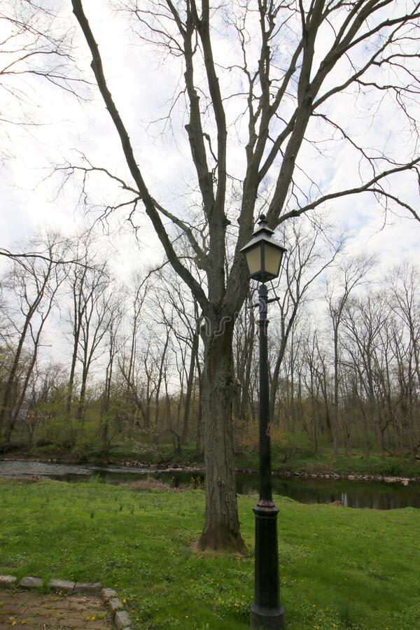 The lamppost in the park by the stream. This path goes through the park and past the stream and the lamppost lights the way royalty free stock images
