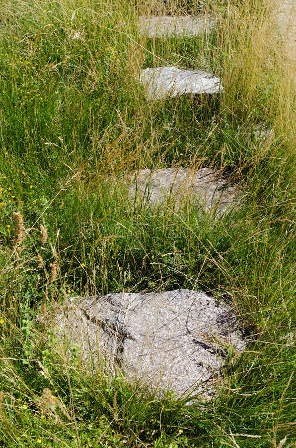 Download Path In The Grass Stock Photo - Image: 32902320