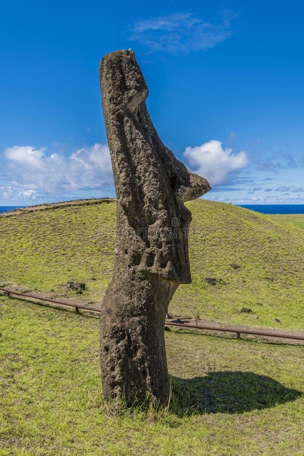 Moai in profile on the hill of the Rano Raraku volcano. Path on the hill of the moais of the Rano Raraku volcano where all the moai were sculpted royalty free stock photography