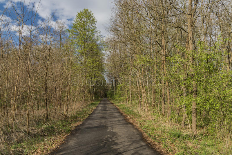 Path between Hodonin and Ratiskovice towns. In spring sunny evening stock photography