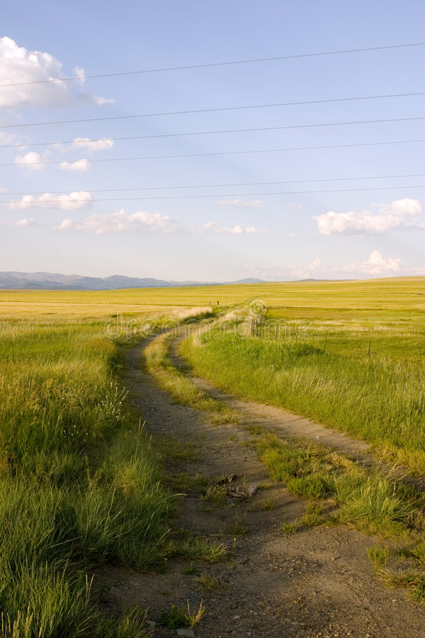 Free Path In The Field Royalty Free Stock Photo - 953785