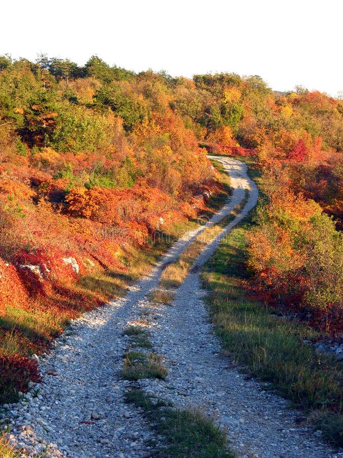 Download Path In Karst Area At Sunset Stock Image - Image: 30576073