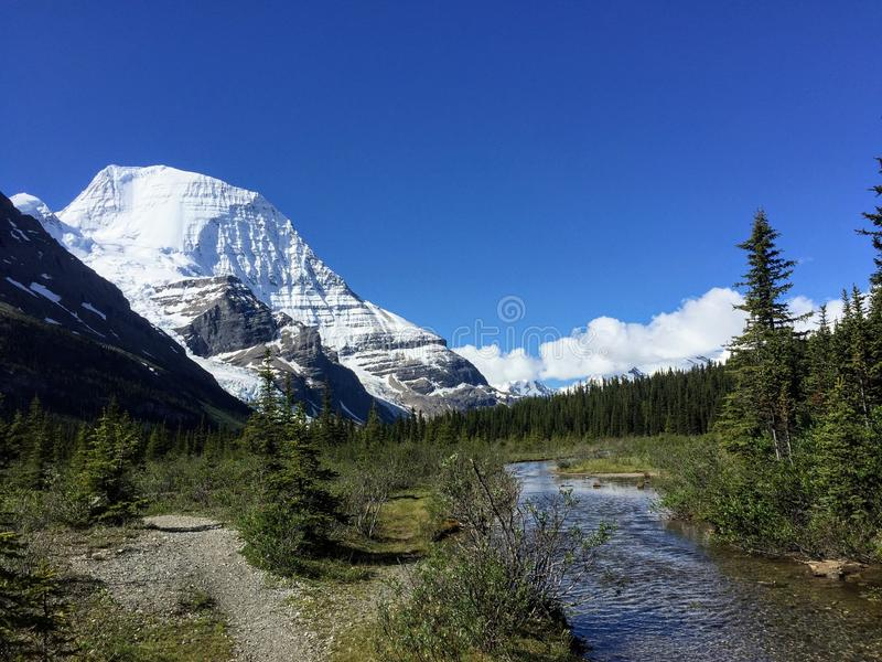 A path leading to the beautiful Mount Robson glacier along the Berg Lake trail royalty free stock images