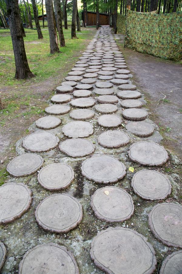 The path is made of sawn wooden rings of pine, fastened with concrete. The Construction. Of The Structure stock image