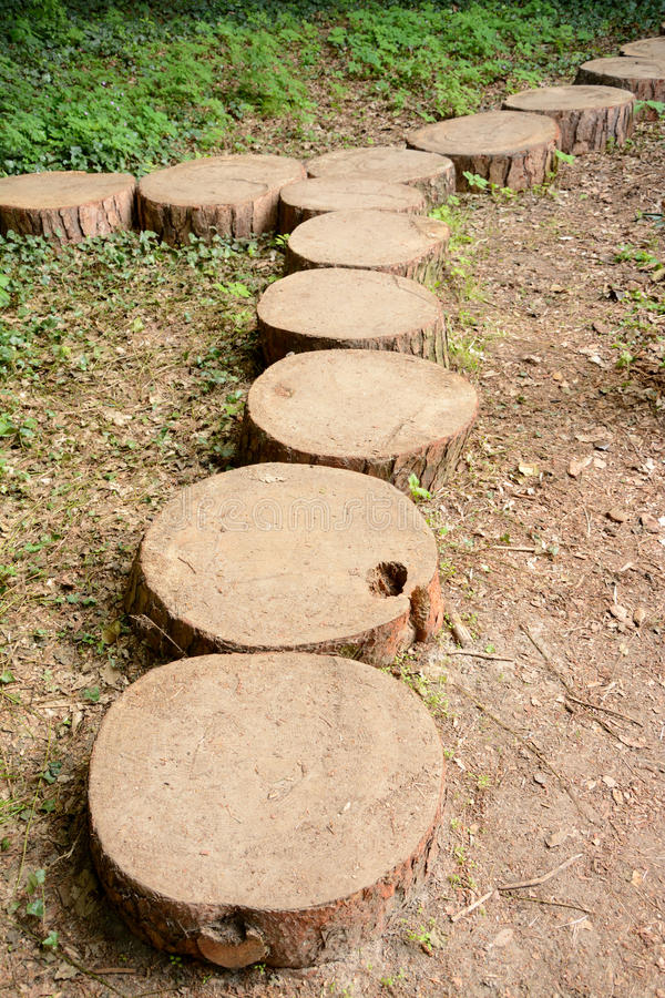 Download Path Made Of Tree Trunk Slices Stock Image   Image Of Wood, Many: