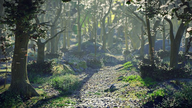 Path through magical forest at sunrise, beautiful fantasy landscape. Misty woodland pathway scene at dawn royalty free stock photo