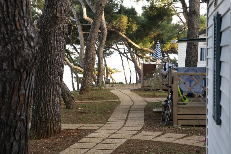Path through a Mediterranean Tourist Holiday Camping Site. Pine trees stock photo