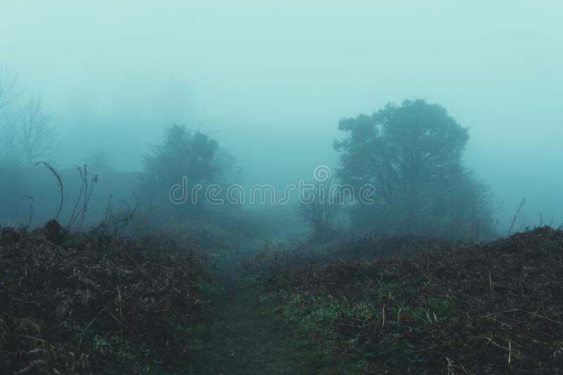 A path through moorland on a moody, dark, foggy, winters day.  royalty free stock photos