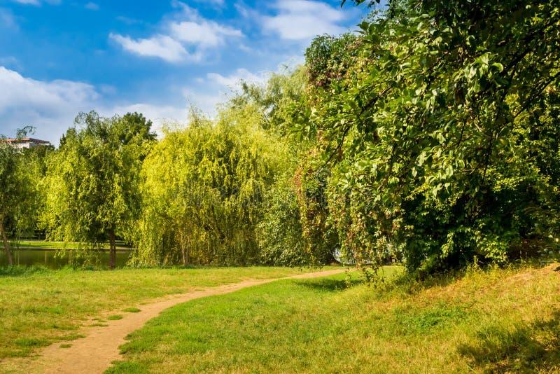 Path in Park. Path near trees in Alexandru Ioan Cuza Park, Bucharest, Romania. Daylight, summer, 2018 stock photography