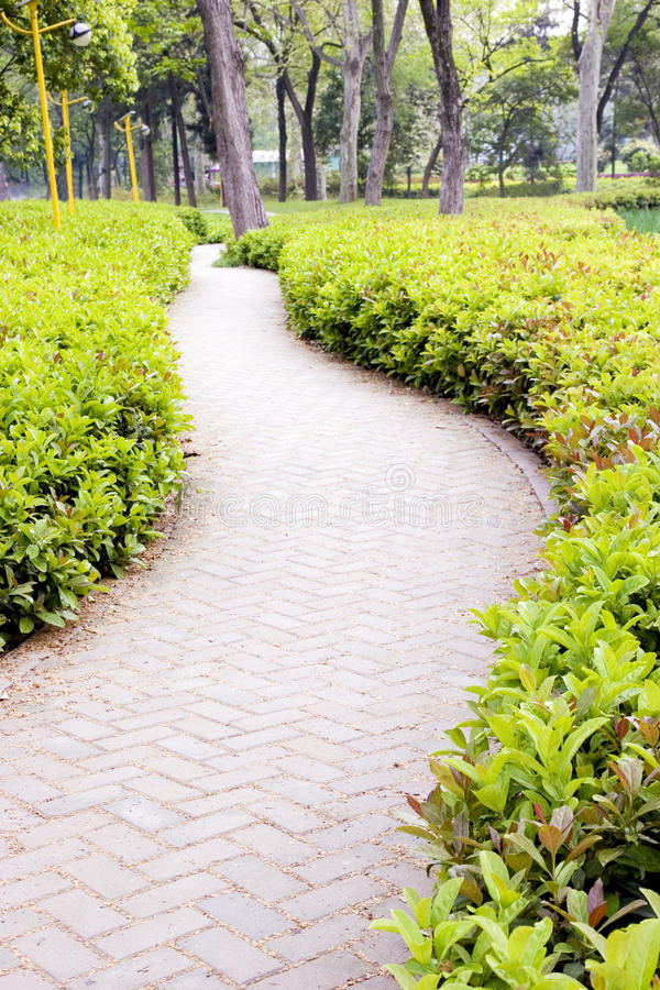 Download Path in park stock image. Image of lawn, nature, garden - 13805893