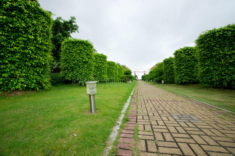 Download Path in park stock image. Image of woods, walkway, road - 20054987