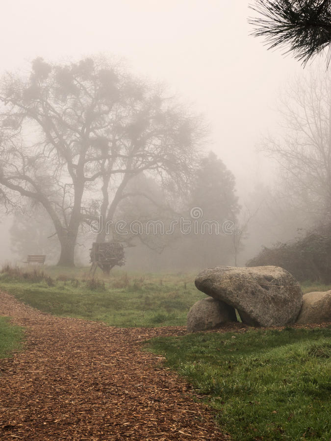 A path through a park on a foggy day. A wood chip path through a park on a foggy day. With a pine tree and a bare branched tree and large rocks in winter stock image