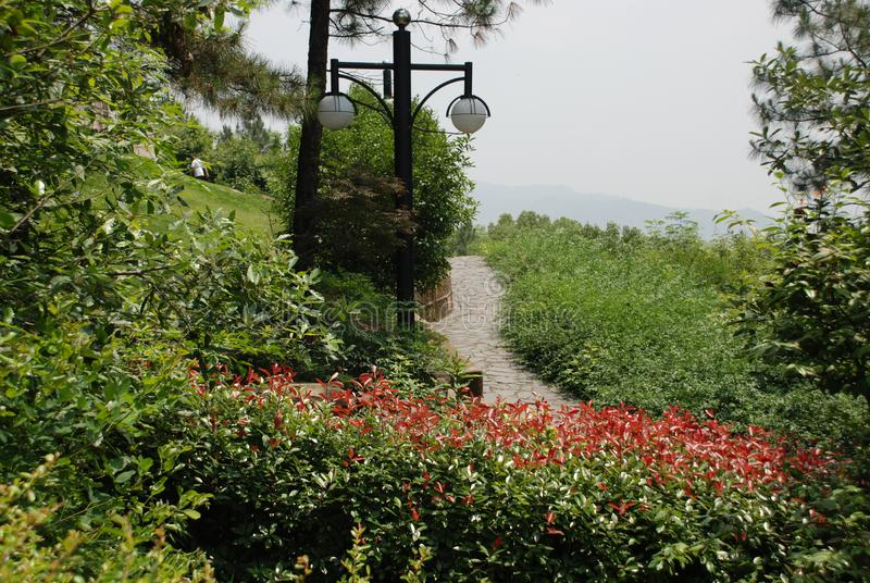 The path in the park stock photo