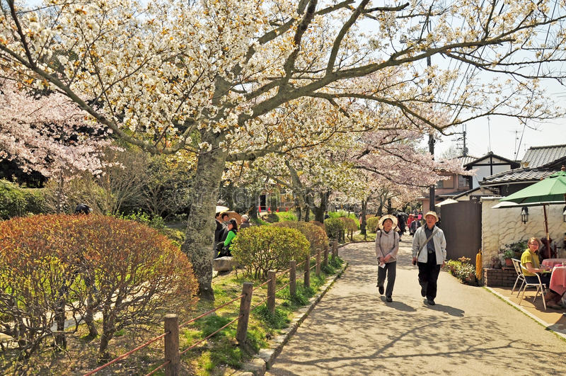 Path of Phylosophy in Kyoto. KYOTO - APRIL 09: Tourists visit Path of Philosophy on April 09, 2014 in Kyoto, Japan. It is a pedestrian path that follows a cherry stock images