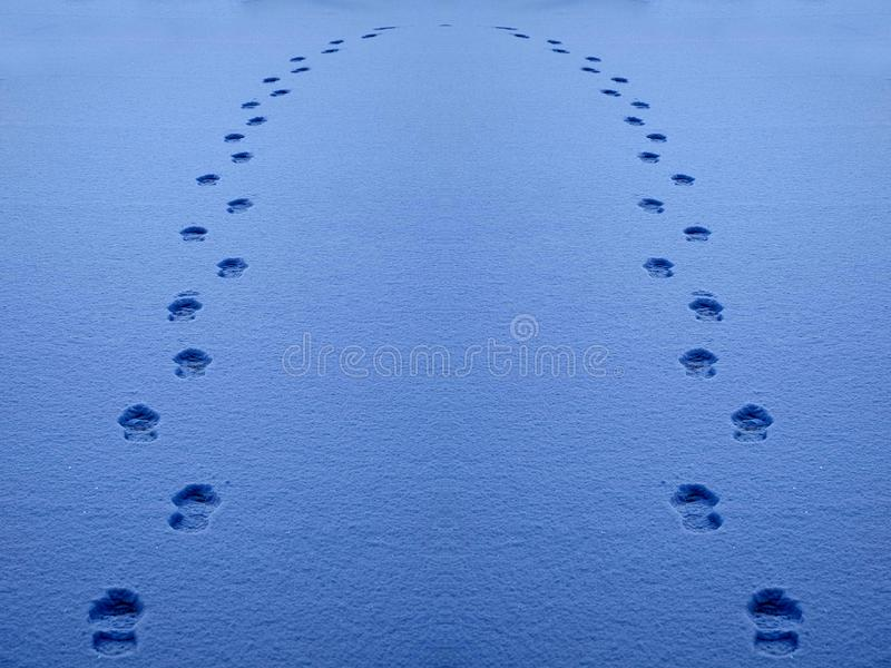 Footprints in the Snow Show a Path for Progress stock images