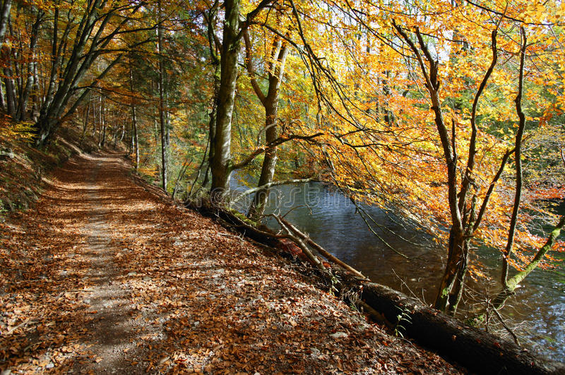 Path and River Wuerm near Starnberg, Germany stock images