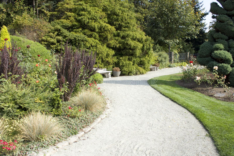 Path in Rose garden stock image