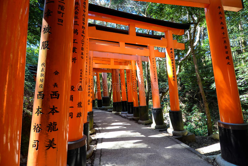 Path through rows of red torii gates at Fushimi Inari-taisha in Kyoto, Japan. Shaded pathway under the many red Shinto torii gates at Fushimi Inari-taisha in royalty free stock photo