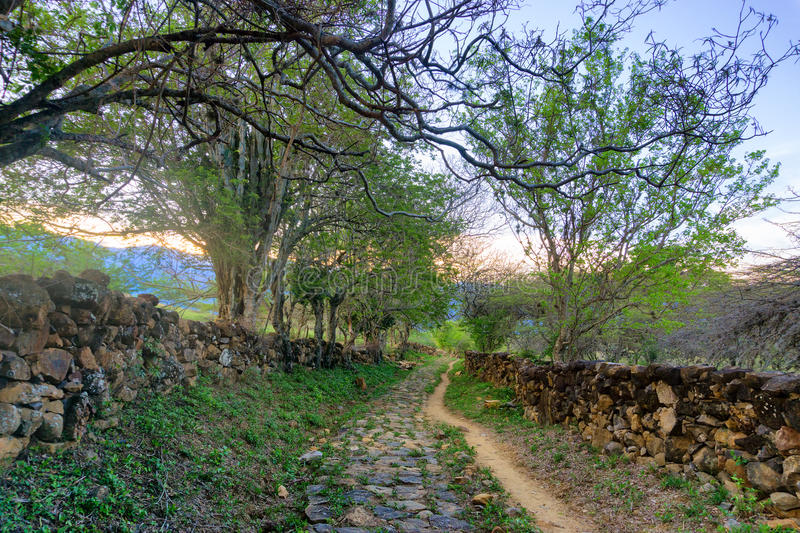 Path in Rural Colombia. Connecting the towns of Barichara and Guane stock photos