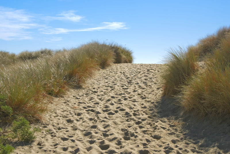 Path through sand dunes stock photography